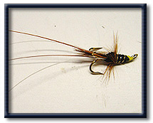 Salmon Fly Patterns - Fly Tying Lessons and Tips from the Scottish