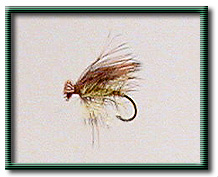Caddis Fly Pattern