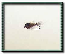 Argentina Fly Fishing Photos | The Caddis Fly: Oregon Fly Fishing Blog